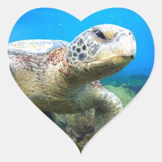 Sea turtle underwater Galapagos Islands Heart Stickers