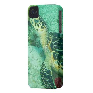 Sea Turtle Underwater iPhone 4 Case