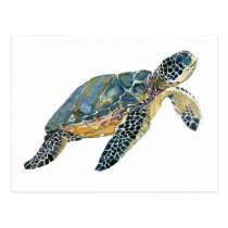 Sea Turtle watercolor sketch Postcard