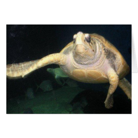 Sea Turtle Waving Card