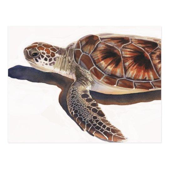 Sea Turtle Wildlife Watercolor Art Postcard