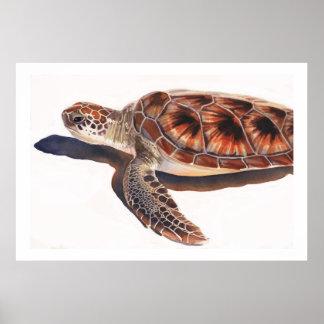Sea Turtle Wildlife Watercolor Art Posters