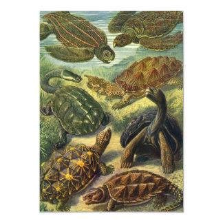Sea Turtles and Tortoises by E. Haeckel Invitation