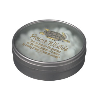 Sea Turtles Candy Tins