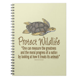 Sea Turtles Notebook