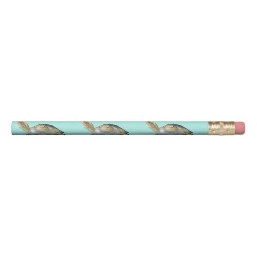Sea Turtles Pencil
