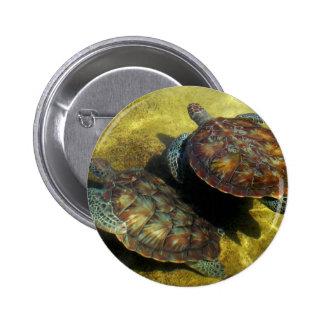 Sea Turtles Pinback Button
