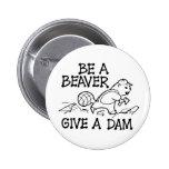 Sea un castor dan una presa pins