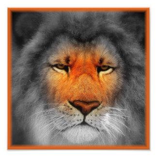 Sea un león arte con fotos