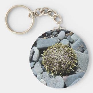 Sea Urchin 1 Key Chain