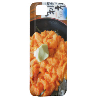 Sea urchin bowl iPhone 5 cases