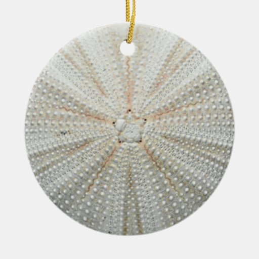 how to make christmas ornaments with sea urchin