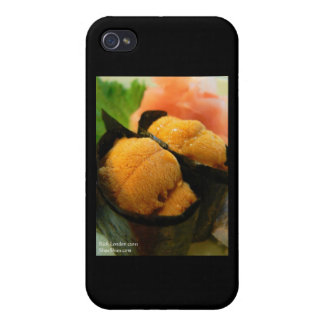 Sea Urchin Gifts Cards & Other Gifts iPhone 4/4S Cases