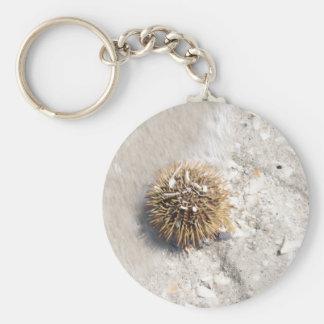 Sea Urchin in the Surf Basic Round Button Keychain