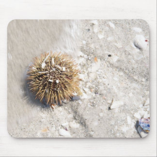 Sea Urchin in the Surf Mouse Pad