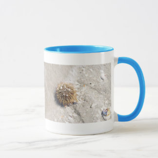 Sea Urchin in the Surf Mug