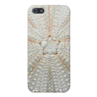Sea Urchin iPhone 4 Speck Case iPhone 5/5S Cases