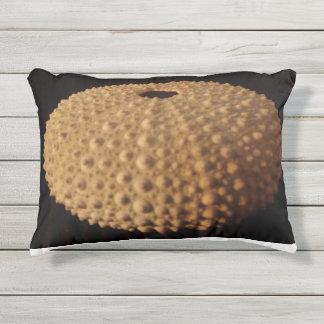 Sea Urchin Outdoor Pillow
