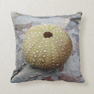 Sea Urchin Pillow