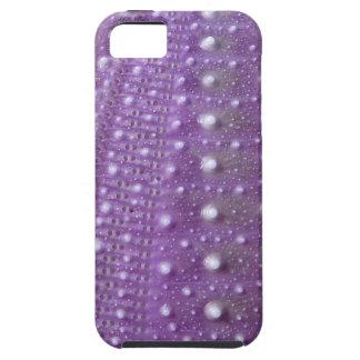 Sea Urchin-Purple iPhone 5 Cover