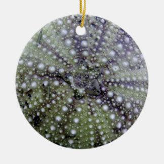 Sea Urchin Seashell Ceramic Ornament