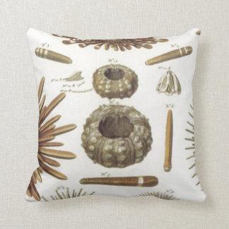 Sea Urchin Seashell Nautical Designs Throw Pillow