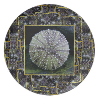 Sea Urchin With Abstract Background Dinner Plates