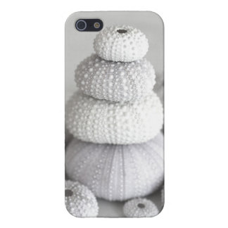 Sea urchins  iphone iPhone 5 cases