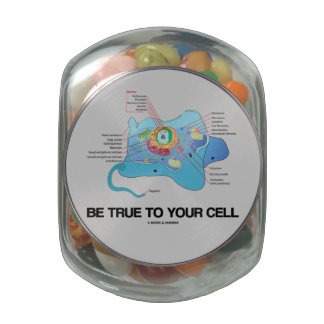 Sea verdad a su eucariota de la célula (uno mismo) jarras de cristal jelly bely