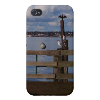 Seabird Convention Cases For iPhone 4