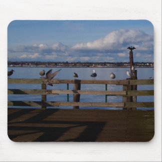 Seabird Convention Mouse Pad