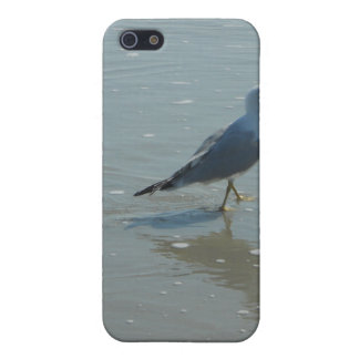 Seabird iphone cover by bbillips iPhone 5 case