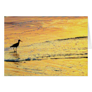 Seabird out to see the sunrise card