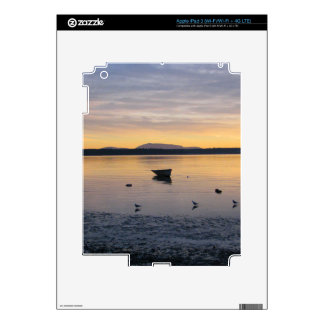 Seabirds and Boat Skins For iPad 3