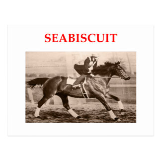 seabiscuit postcard