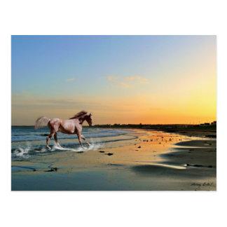 Seaburn Beach, Sunderland Postcard
