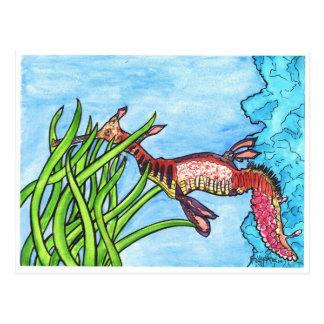Seadragon by Sally Stevens Postcard