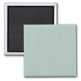 Seafoam Blue Sea Foam Green Color Trend Template Fridge Magnets