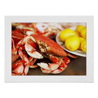 Seafood Crab Photograph Poster/print 24x19 Poster