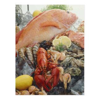 Seafood Post Card