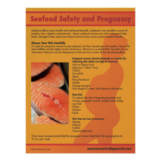 Seafood Safety and Pregnancy Poster