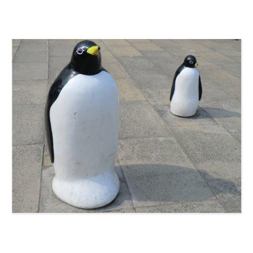 Seafront Penguins [2] Postcard