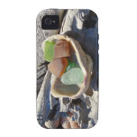 Seaglass iPHONE 4 cases Sea Glass Shell Diftwood