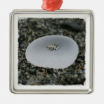 Seaglass Treasure Christmas Ornament