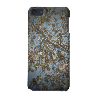Seagrape plant, pinhole camera style, blue sky iPod touch (5th generation) case