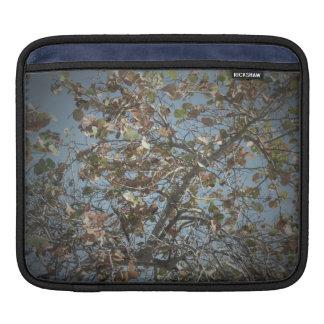 Seagrape plant, pinhole camera style, blue sky sleeve for iPads