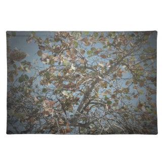 Seagrape plant, pinhole camera style, blue sky cloth place mat