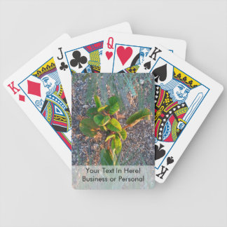 seagrape with grass overlay bicycle playing cards