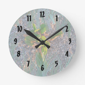 seagrape with grass overlay clocks
