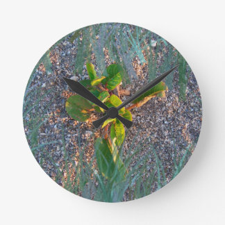 seagrape with grass overlay wall clock